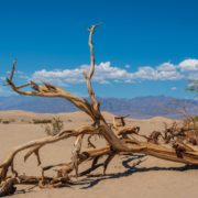 Is there a second valley of death for startups and scale-ups?
